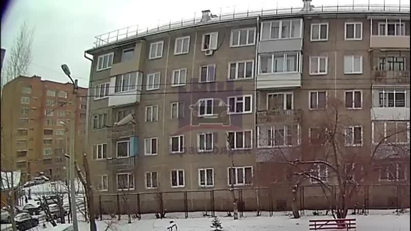 В Красноярске с 5 этажа многоэтажного дома нелюди выбросили той-терьера. Пёс чудом остался жив и даже поднялся на лапы