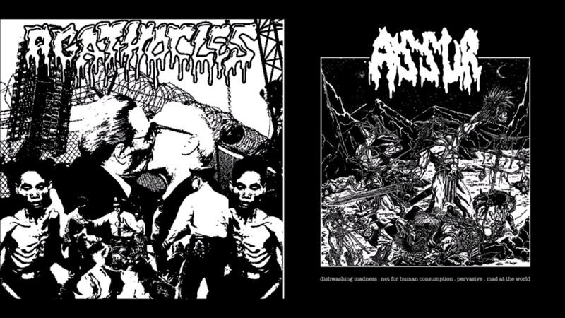 Agathocles Assur Split 7