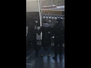 Задержание мужчины, выгуливавшего собаку Рифмы и Панчи