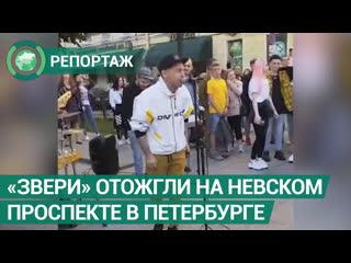 Звери отожгли на Невском проспекте в Петербурге. ФАН-ТВ