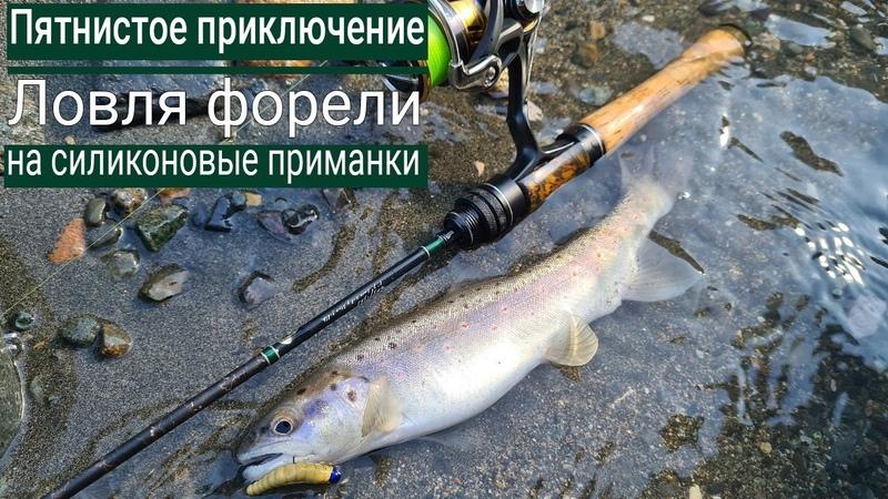 Рыбалка там где живут МЕДВЕДИ 🐾 Ловля форели на резину