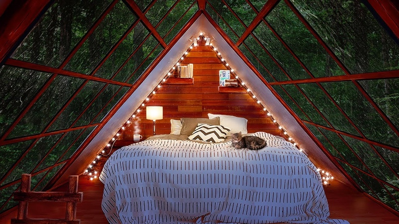Cozy Cabin Ambience Rainstorm with Thunder Sounds for Sleep 8 Hours