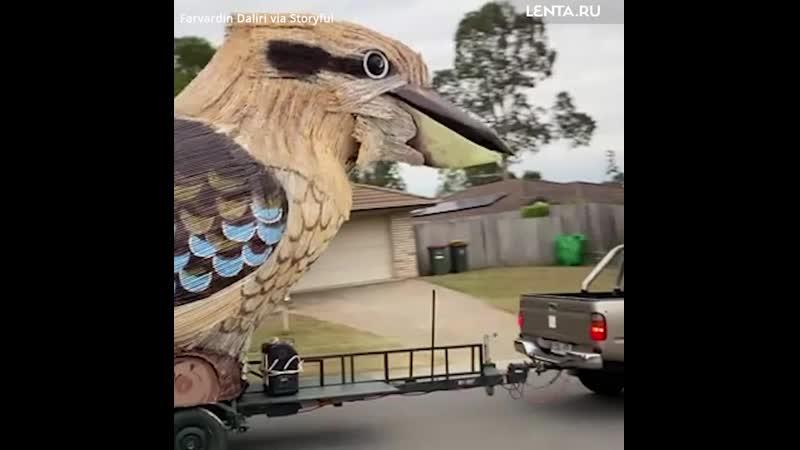 Гигантская птица на прицепе