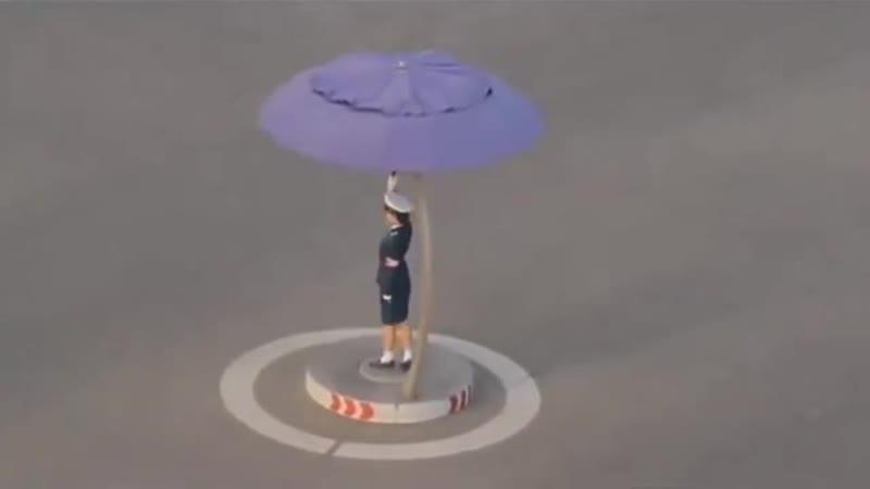 Хорошо хоть зонтик поставили