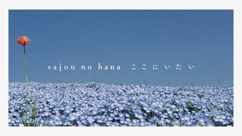 【sajou no hana】ここにいたい (TVアニメ「とある科学の超電磁砲T」15話挿入歌) スマートフォン視聴推奨