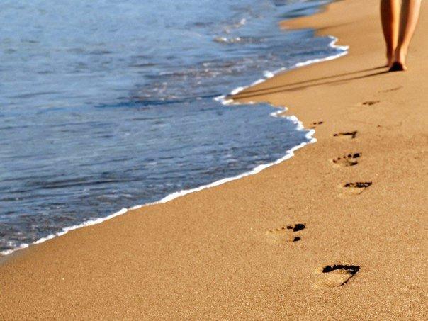Не иди туда, куда ведет дорога. Иди туда, где дороги нет, и оставь свой след.