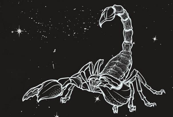 Месяц Скорпиона в 2019 году:Чего ожидать всем знакам зодиака