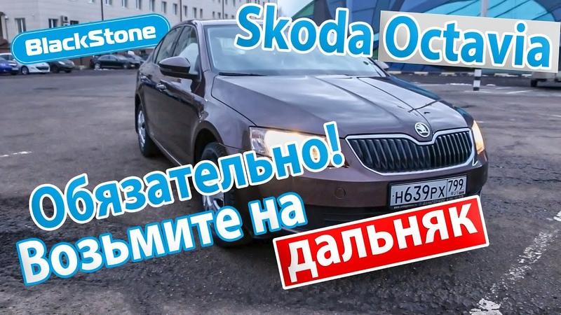 Skoda Octavia для активного отдыха и путешествий на пневмобаллонах BlackStone
