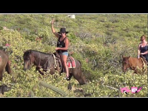Horseback Riding in Cabo ponyboy