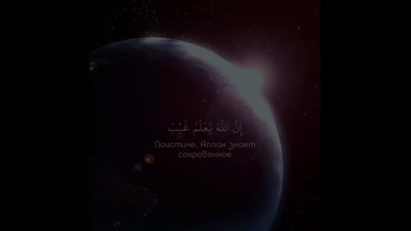 Чтец Abdul Rohman MosadSurat « 49 - Hujurat »