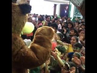 Маша и Медведь в Индии