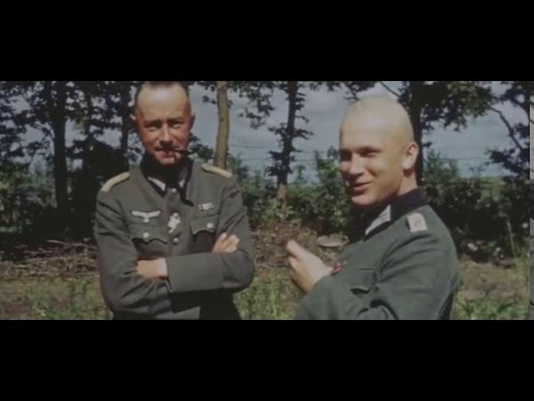 17 армия и Дивизия СС Викинг в районе городов Жовква и Збараж Цветная хроника июнь июль 1941 г
