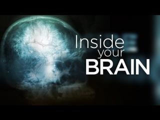 BBC Тайны мозга - Все проходит через мозг