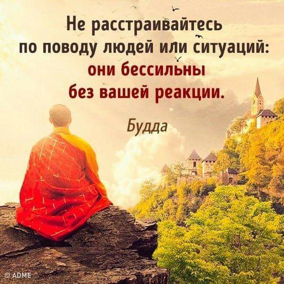 буддийские мудрости о жизни в картинках освоить эту специальность