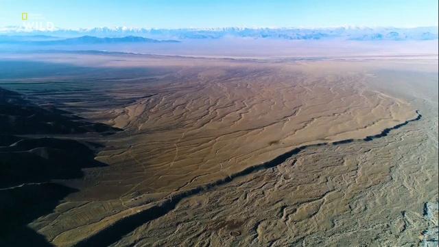 Дикая Монголия: страна крайностей. Степь / Wild Mongolia. Land of Extremes (2018)
