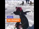 Драка за лунку на рыбалке – Москва 24