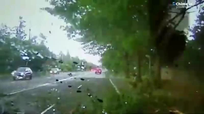 Удар молнии в дерево VHS Video