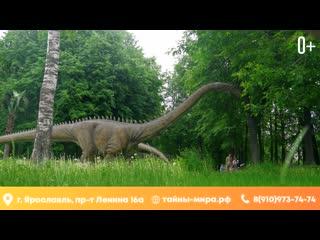 Новый сезон в парке динозавров