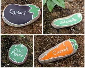 Для борьбы с вредителями на огороде.