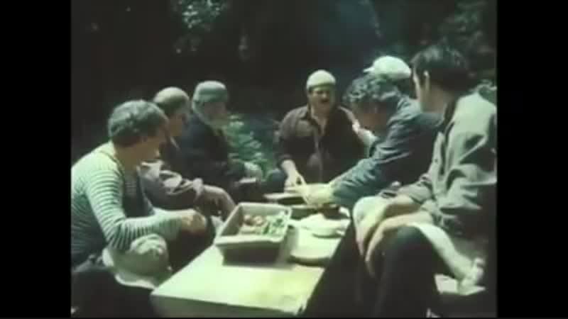 Как грузины грибы проверяли. Самые быстрые в мире.)