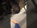 Котенок застрял в моторном отсеке