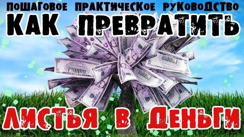 Как превращать листья деревьев в деньги