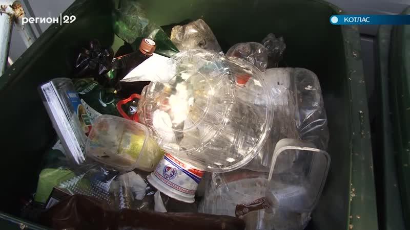 В Котласе стартовал проект по раздельному сбору мусора