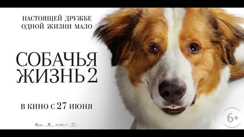 Собачья жизнь 2 2019 г. ‧ Драма Фэнтези ‧ 1 ч 48 мин