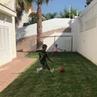 Cristiano Ronaldo Instagram Cristiano Junior his cousin Dennis