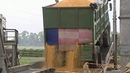 МВД Украины: «Прожорливые мыши» съели стратегический запас зерна. Новости. Первый канал