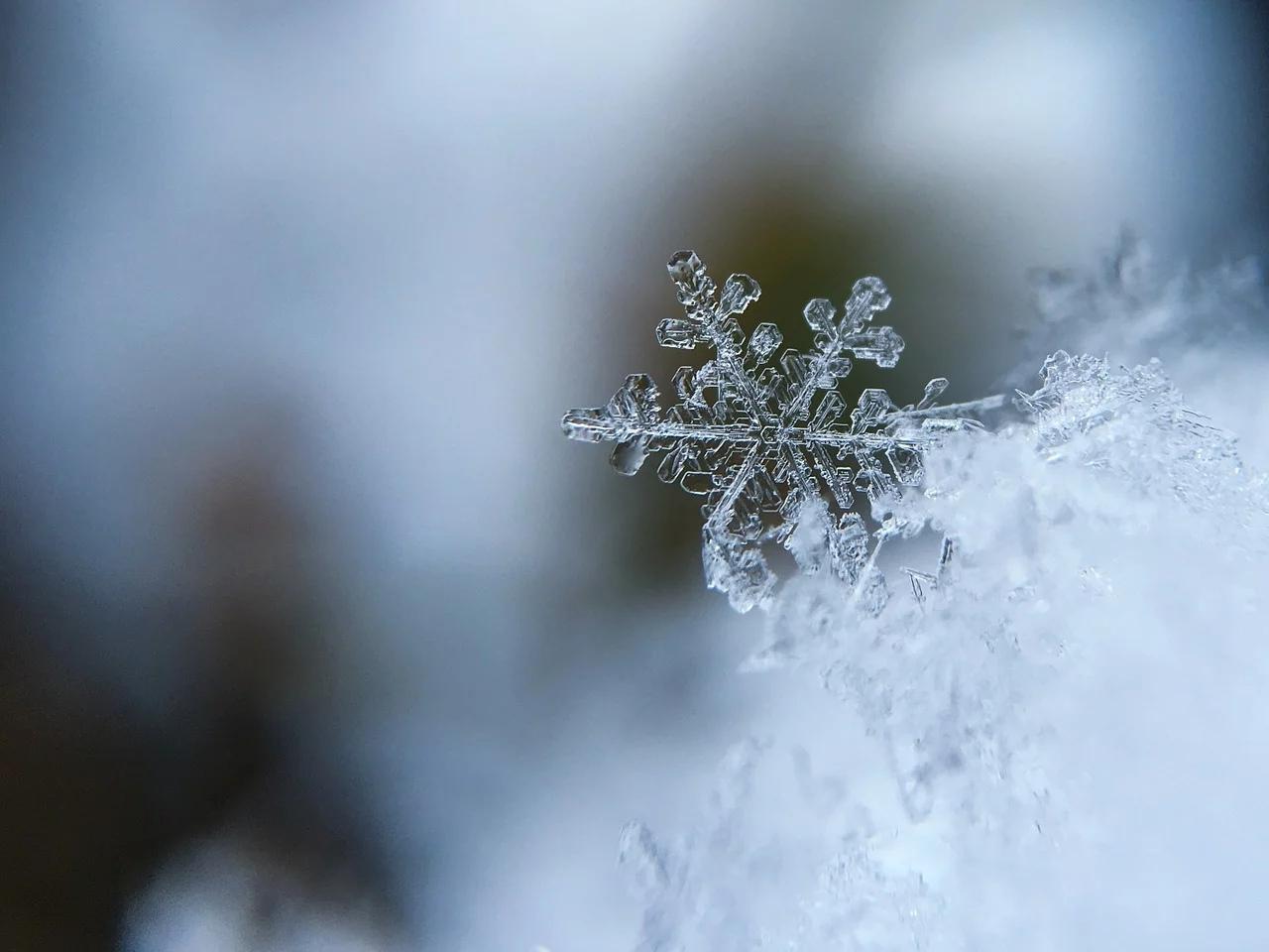 Зима идёт! Завтра в Марий Эл вторгнутся холода, и это надолго