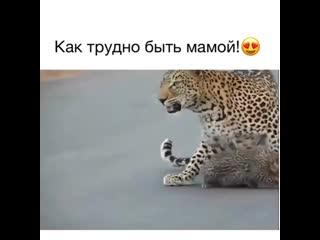 Как трудно быть мамой! ))