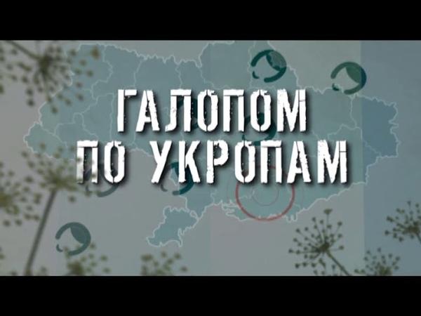 ГТРК ЛНР Галопом по укропам 13 40 30 марта 2020 год