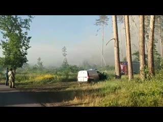 Пожар в лесу Тольятти. .