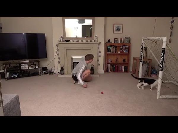 Невероятные сейвы кота Мяунуэля Нойера