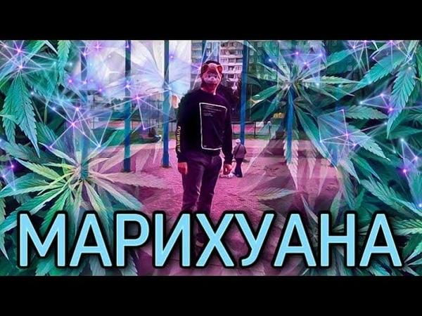 БОШКИ ШИШКИ МАРИХУАНА feat ЧУДО ПРИРОДЫ