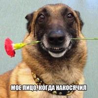 Фотография анкеты Адилета Бердибекова ВКонтакте