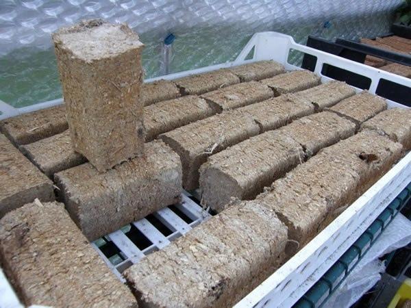 Бизнес-идея: Переработка картонных коробок в топливные брикеты