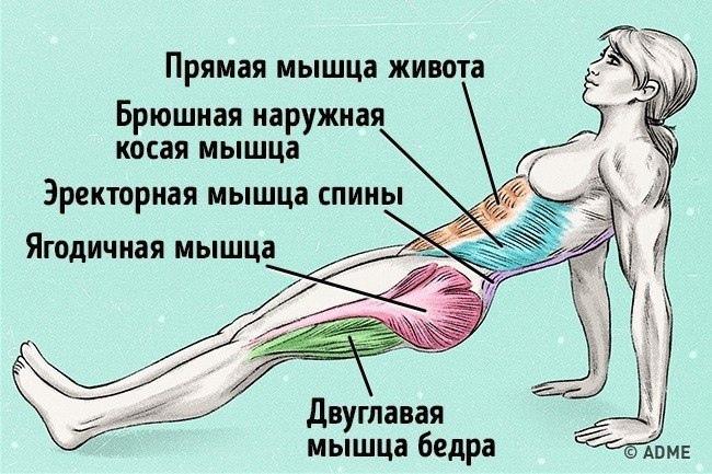 Упражнение, которое поможет сжечь жир и исправить осанку ☺
