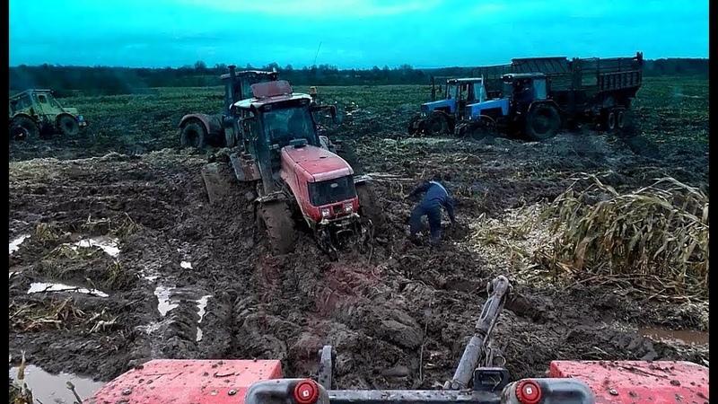 Синий трактор Трактор Беларус 1221 на бездорожье Off road tractor 13