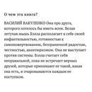 Вася Вакуленко фото #20