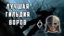 КАКАЯ ГИЛЬДИЯ ВОРОВ ЛУЧШЕ? Oblivion или Skyrim (АНАЛИТИКА)