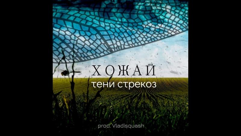 ХоЖаЙ Тени стрекоз Prod Vladisquash 2020