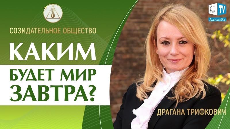 🌍 Драгана Трифкович Созидательное общество 6 рукопожатий