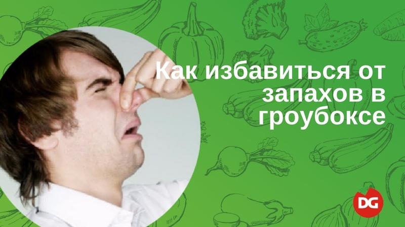 №10 Как избавиться от запахов в гроубоксе