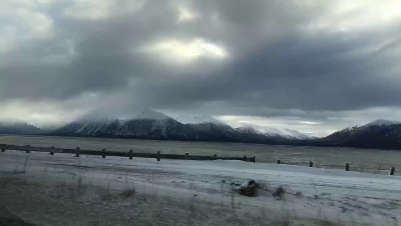 Отдам Даром на Аляске